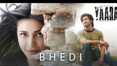 Photo of BHEDI Lyrics in English and Hindi   Yaara    Ankit Tiwari, Aishwarya M