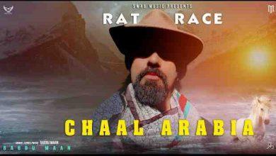Photo of Rat Race | Chaal Arabia Lyrics in English and Punjabi | Babbu Maan